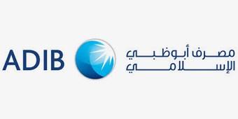Logos_grey_ADIB