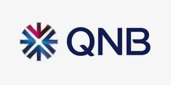 Logos_grey_QNB